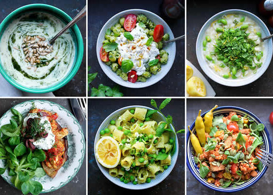 Starting A Plant based Diet For Clean Sources of Protein