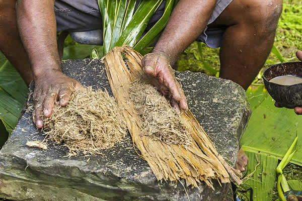 Using Kava Root For Natural Health