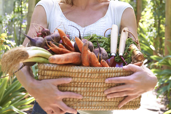 Make Yourself A Change Adopting A Vegan Diet Lifestyle